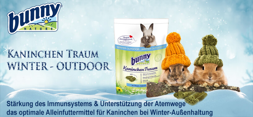 Bunny Winter Outdoor