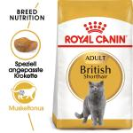 Royal Canin British Shorthair 34 | 4kg