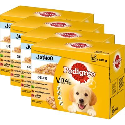 Sparpack! Pedigree Multipack Junior in Gelee | (4 x 12 =) 48 x 100g